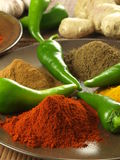 Pepper with spices Stock Photos