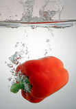 Pepper splashing in water stock images