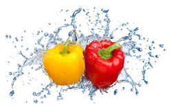 Pepper in spray of water. Royalty Free Stock Photos