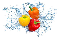 Pepper in spray of water. Royalty Free Stock Image