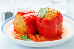 Pepper stuffed with meat and rice Stock Image