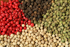 Pepper texture. All sorts of pepper: white, green, red and black Stock Photos