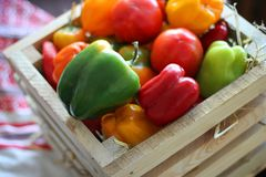 Pepper. Thanksgiving Day. Harvest. Fruits and vegetables in a wooden box. royalty free stock images