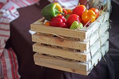Pepper. Thanksgiving Day. Harvest. Fruits and vegetables in a wooden box. royalty free stock photos