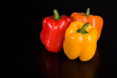 Pepper trio Stock Image