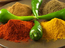 Pepper, turmeric, cumin and cinnamon Royalty Free Stock Photo