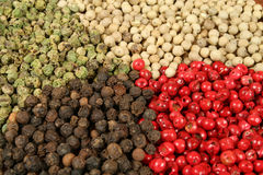 Pepper types. All sorts of pepper: white, green, red and black Stock Image
