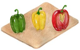 Delicious Mexican Bell pepper royalty free illustration