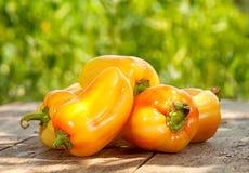 Pepper vegetable Royalty Free Stock Photo
