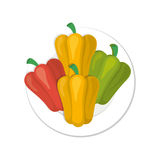 Pepper vegetable icon. Dish with different types of peppers vegetable over white background. vector illustration Stock Photography