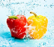 Pepper and water Stock Photography