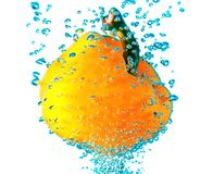 Pepper in water Stock Photography