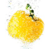 Pepper in water Royalty Free Stock Photography