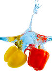 Pepper in water Royalty Free Stock Photo