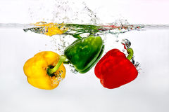 Pepper in Water on white background Royalty Free Stock Photography