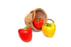 Pepper and wattled basket isolated on a white. Background Stock Image