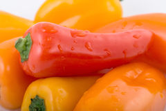 Pepper. Wet red pepper. Other color peppers as background Royalty Free Stock Photos