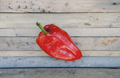 Pepper on the wooden table Stock Photography