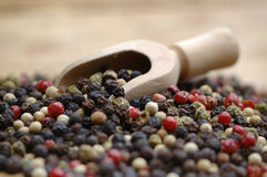 Peppercorn Stock Images