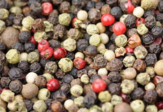 Peppercorn. Five types of peppercorns ready for grinding Royalty Free Stock Photo
