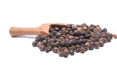 Peppercorn Royalty Free Stock Image