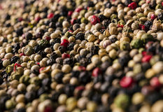 Peppercorn mix texture background Stock Image