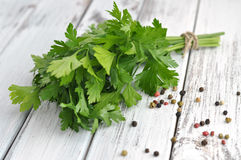 Peppercorn and Parsley Royalty Free Stock Photo