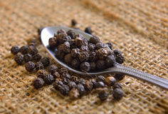 Peppercorn in spoon Royalty Free Stock Images