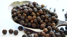 Peppercorns στο κουτάλι Στοκ Εικόνες