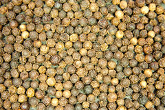 Peppercorns Royalty Free Stock Photos