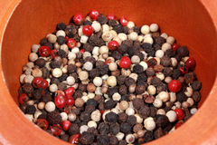 Peppercorns Royaltyfri Bild