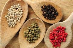 Peppercorns Assorted imagens de stock