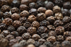 Peppercorns Closeup Royalty Free Stock Images