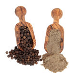 Peppercorns and Pepper Powder Stock Images