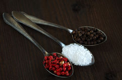 Peppercorns and salt Royalty Free Stock Photo