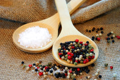 Peppercorns and Sea Salt Stock Photography