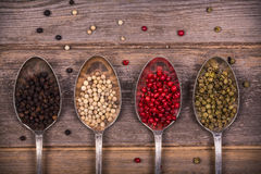 Peppercorns in silver spoons Royalty Free Stock Images