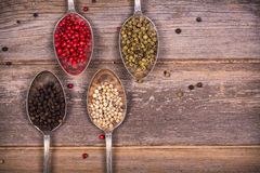 Peppercorns in silver spoons Royalty Free Stock Image