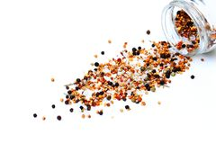 Peppercorns spilled on a white background royalty free stock photography