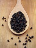 Peppercorns on Spoon. Black Peppercorns on a wooden spoon stock photography