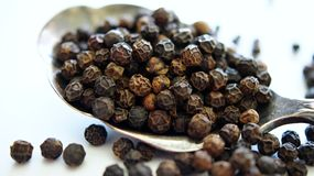 Peppercorns in spoon Stock Images