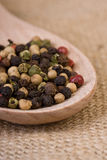 Peppercorns on Wooden Spoon Stock Image