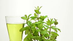 Peppermint εγκαταστάσεις και peppermint τσάι φιλμ μικρού μήκους