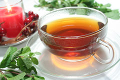 peppermint τσάι Στοκ φωτογραφία με δικαίωμα ελεύθερης χρήσης