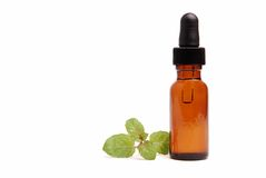 Peppermint Aromatherapy. Bottle of peppermint aromatherapy oil with a sprig of peppermint herb Stock Photos