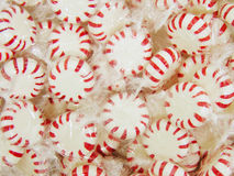 Peppermint Background stock images