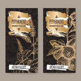 Peppermint and bergamot sketch on black background. Set of two labels with Mentha piperita aka Peppermint and Citrus bergamia aka bergamot sketch on black and Royalty Free Stock Photo