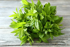 Peppermint on the boards. Herbs Royalty Free Stock Photography