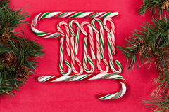 Peppermint candy canes with evergreen branches on red background Royalty Free Stock Photo