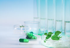 Peppermint capsules, research and development Stock Photos
